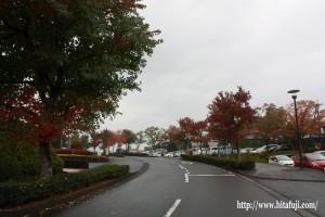 総合体育館前25.11.10②