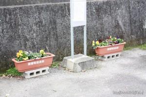 自治会花植え