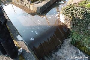 ウッド調整池の水①26.3.23