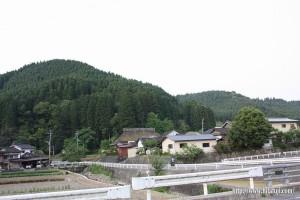 東有田地区風景④