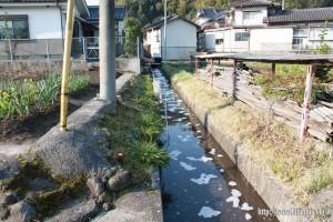 調整池から流れ出た泡と茶色の水①