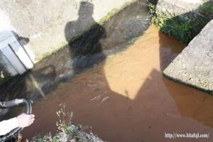 日掛け水路と交わる所・26.5.1