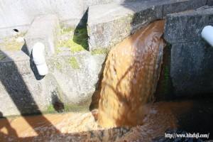 調整池の水①