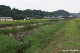 有田川草刈り前