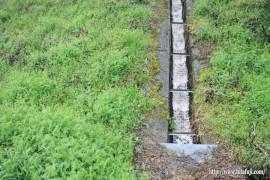 企業用地から油混じりの汚い水