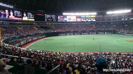 野球観戦27.5.16 ①