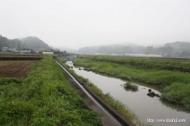 有田川草刈り27.5.31 現状