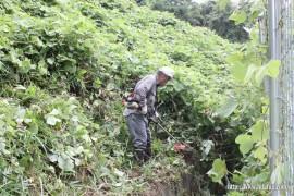 調整池からの水路・草刈り作業④27.8.16