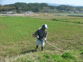 草刈り22.5.1