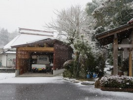 初雪31.1.26④